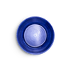 Blue_plate_25cm.png - 1200px x 1200px (png)